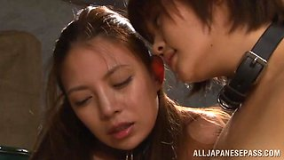 video titel: Amazing Japanese AV Model plays slave in nasty group action || porn tgas: action,amazing,group,japanese,txxx
